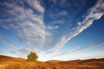 Cirrus cloud formation above moorland. Scotland. December.