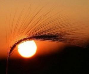 Matahari Adalah Bukti Kekuasaan Allah
